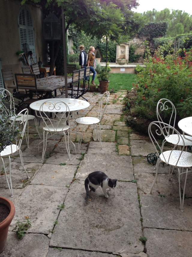 Maison Trevier & Bebe Chat