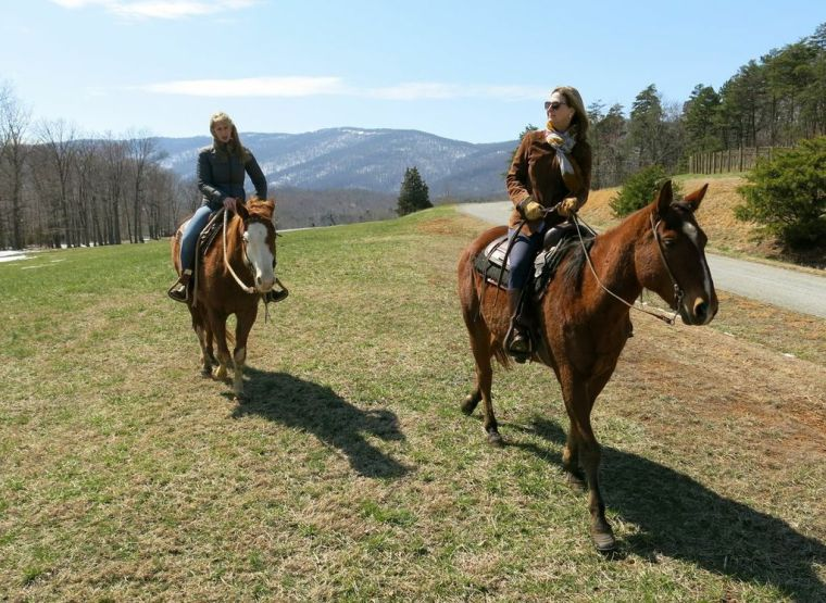 Veritas_Vineyard_Horseback_Riding